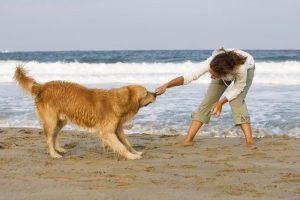 girl dog beach