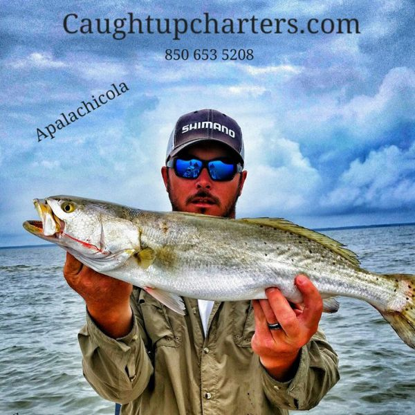 Caught Up Charters