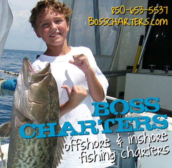 Boss charters apalachicola st george island eastpoint for Fishing charters mexico beach fl